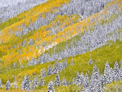Autumn Meets Winter in the Rocky Mountains