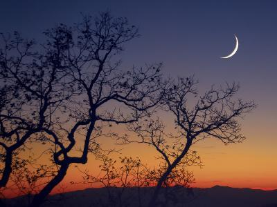 A Crescent Moon Rises over the Mountains at Sunset