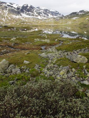 Hardangervidda, Telemark, Norway, Scandinavia, Europe