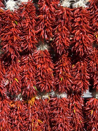 Chillies for Sales, Santa Fe, New Mexico, United States of America, North America