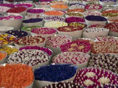 Flower Market, Kunming, Yunnan, China, Asia