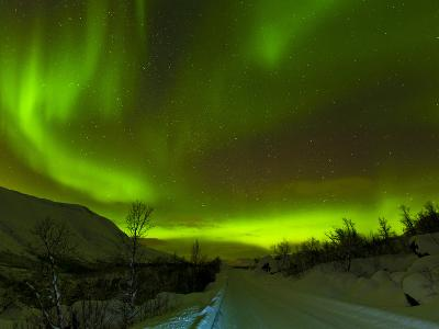 Aurora Borealis (Northern Lights) Seen over a Snow Covered Road, Troms, North Norway, Scandinavia,