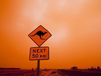 Kangaroo Crossing Road Sign, Outback Dust Storm, Rural Highway, Ivanhoe, New South Wales, Australia