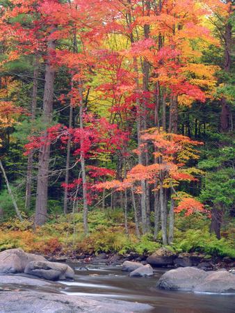 Autumn in the Adirondack Mountains, New York, Usa