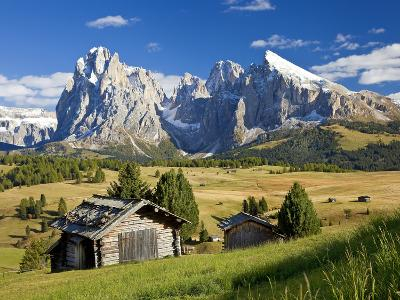 Italy, Trentino-Alto Adige, South Tyrol, Bolzano District, Alpe Di Siusi, Seiser Alm, Sassolungo (L