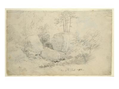 Boulders in Woodland, 1800 (Pencil on Paper)