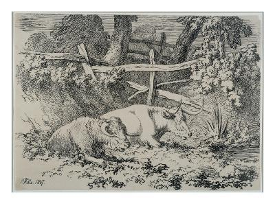 Cattle Resting, 1807 (Pen and Ink on Paper)