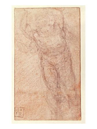 Study for 'The Resurrection', C.1532-34 (Red and Black Chalk on Paper) (Recto)