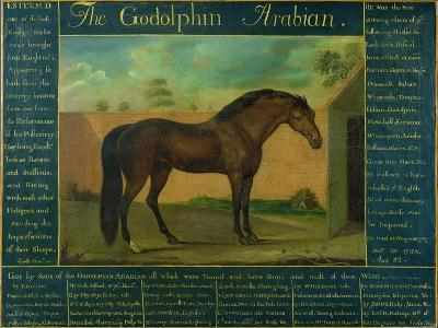 The Godolphin Arabian