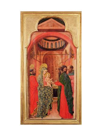 The Circumcision, from an Altarpiece Depicting Scenes from the Life of the Virgin, C.1445