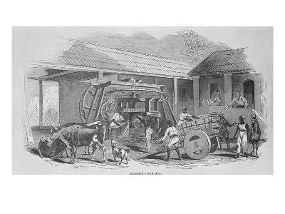 The Sugar Mill, C.1835 (Litho)