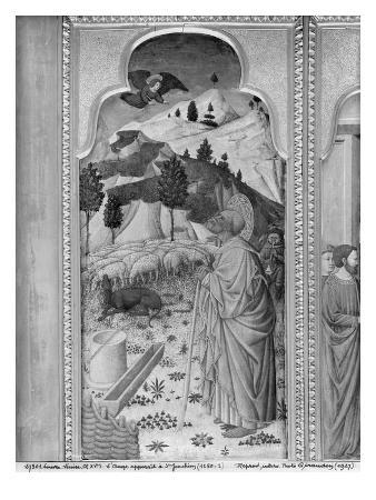 Cycle of the Life of the Virgin, Annunciation to Joachim, C.1445 (Oil on Poplar Panel) (B/W Photo)