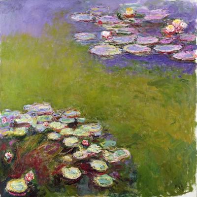 Waterlilies, 1914-17