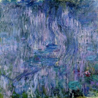 Waterlilies and Reflections of a Willow Tree, 1916-19