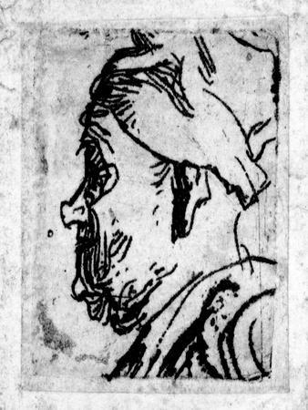 Old Man with a Snub Nose, C.1629 (Etching)