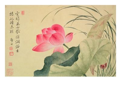 Lotus Flower, by Yun Shou-P'Ing (1633-90), from an 'Album of Flowers', (W/C on Silk Backed Paper)