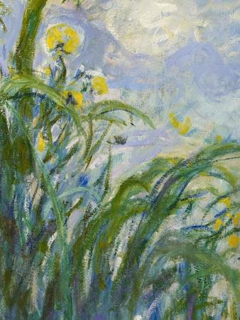 The Yellow Iris (Detail)