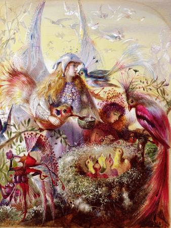 Fairies with Birds (W/C)