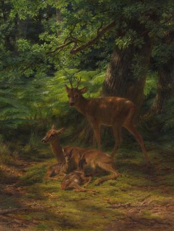 Deer in Repose, 1867
