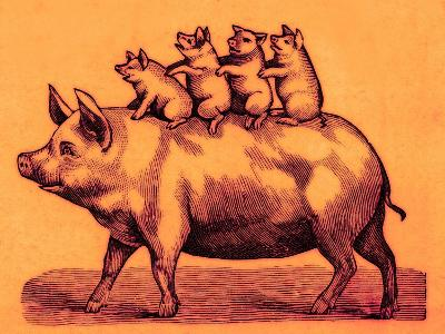 Pig with its Piglets, Illustration from 'Cole's Funny Picture Book' (Digitally Enhanced Image)