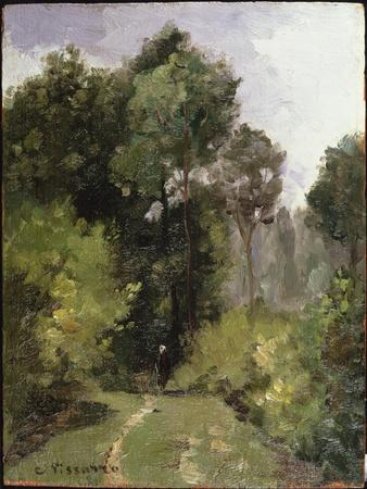 Under the Trees, 1864 (Oil on Board)