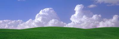 USA, Washington, Palouse, Wheat and Clouds