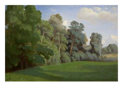Study of Trees at Mortefontaine