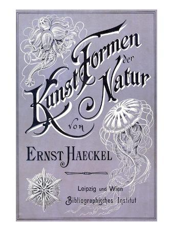 Kunstformen Der Natur - Artforms in Nature Book Cover