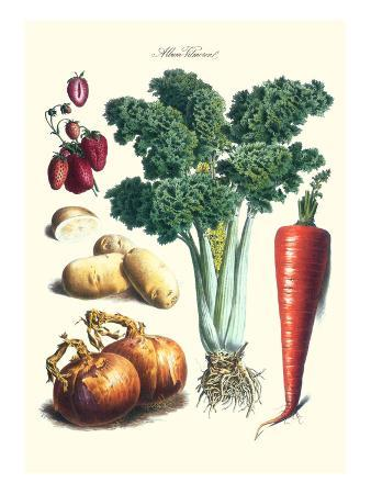 Vegetables; Celery, Strawberry, Onion, Carrot, and Potato