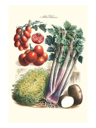 Vegetables; Tomato Varieties, Celery, and Potato