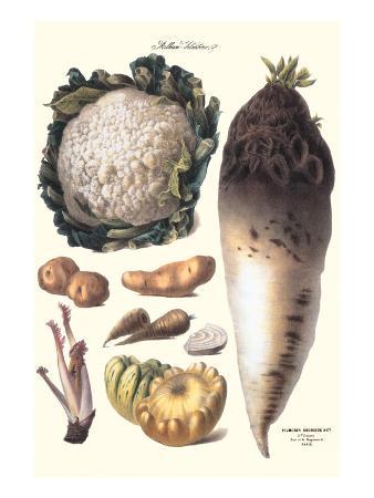 Vegetables: Califlower, Gourds, Potato, Onion,