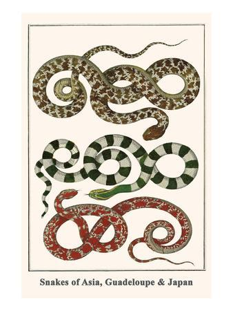 Snakes of Asia, Guadeloupe and Japan
