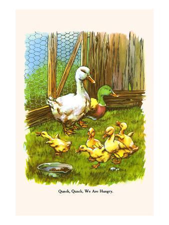 Quack Quack, We are Hungry