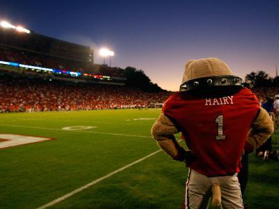 University of Georgia - Sanford Stadium - Hairy