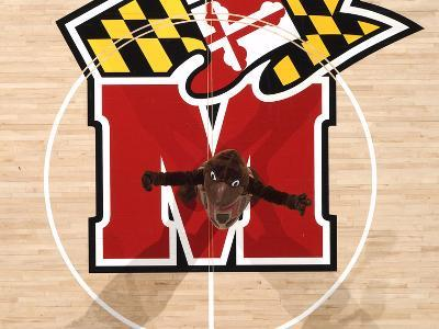 University of Maryland - Testudo at Center Court in the Comcast Center