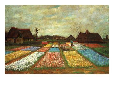 Flower Beds of Holland