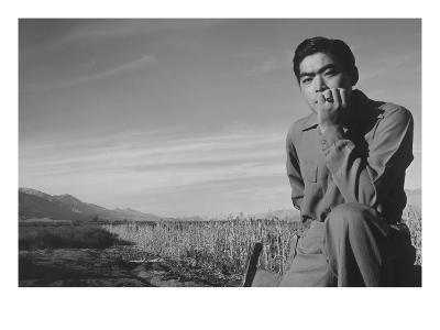 Tom Kobayashi, Landscape