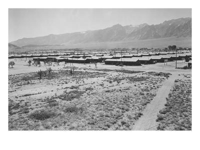 Manzanar from Guard Tower, Summer Heat