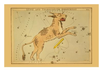 Lynx and Telescopium Herschilii