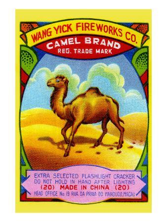 Wang Yick Fireworks Camel Brand