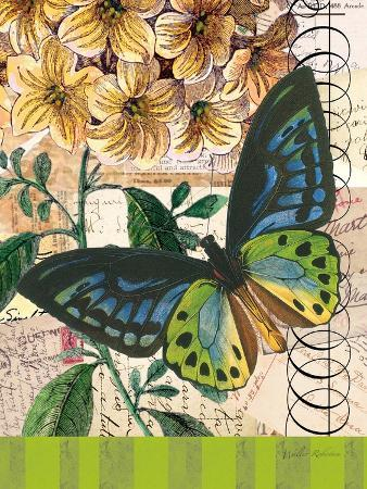 Bountiful Butterfly 2