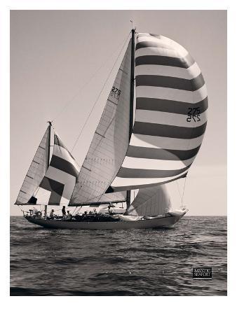 Gemini's Sails