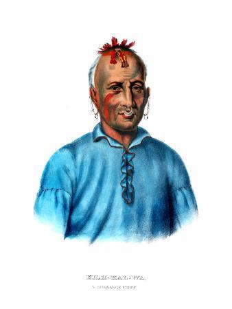 Kishkalwa, a Shawnee Chief