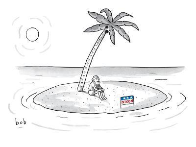 Bearded man sits on a deserted island. A campaign sign in front of him rea… - New Yorker Cartoon