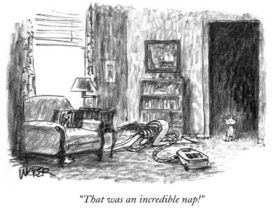 """""""That was an incredible nap!"""" - New Yorker Cartoon"""