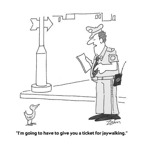 I M Going To Have To Give You A Ticket For Jaywalking Cartoon