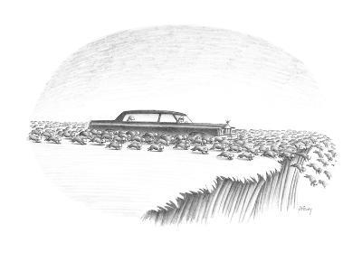 Herd of lemmings are running off cliff, one is being chauffeured in a limo… - New Yorker Cartoon