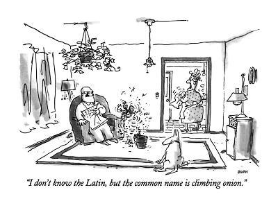 """""""I don't know the Latin, but the common name is climbing onion."""" - New Yorker Cartoon"""