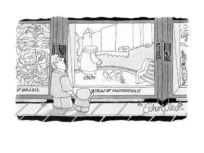 "Exhibit in museum is called ""Birds Of Manhattan,"" showing a woman feeding … - New Yorker Cartoon"