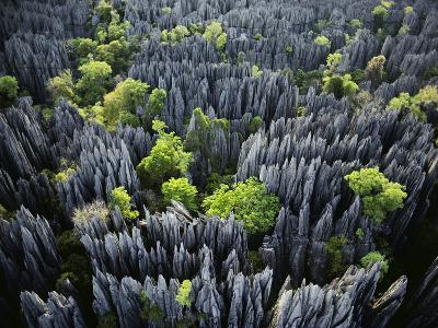 Eroded Limestone Pinnacles (Aerial), Bemaraha National Park, Madagascar